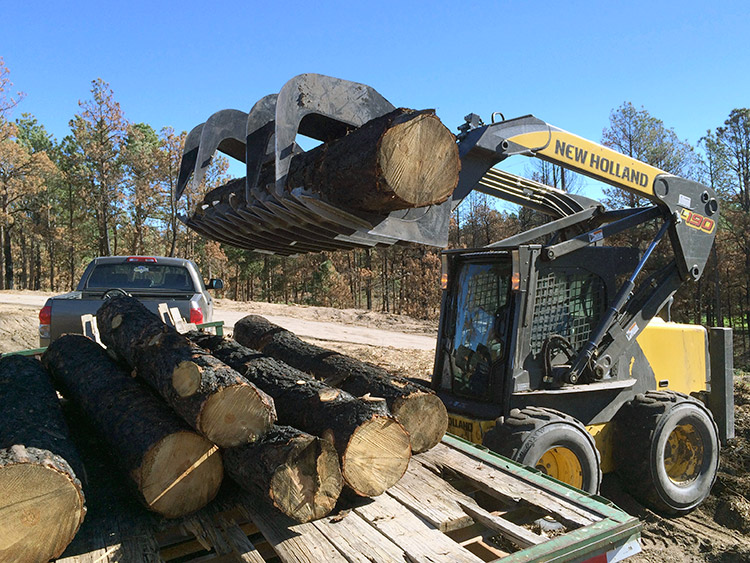 loading-burned-trees-onto-trailer